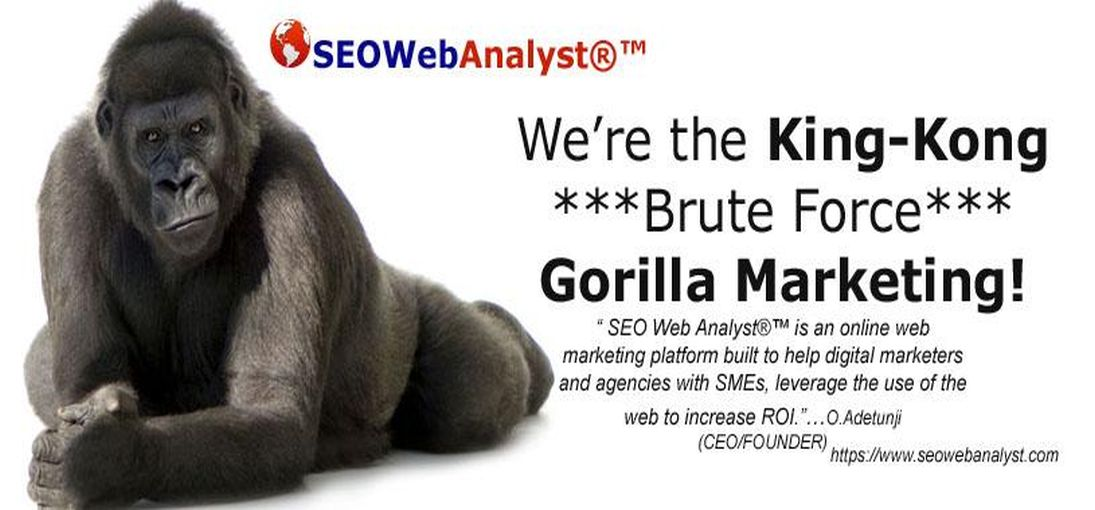 SEO Web Analyst®™ Technology Objectives